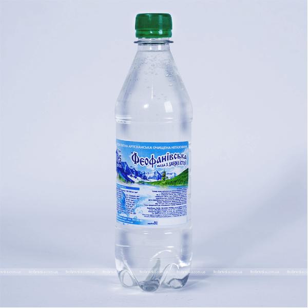 Вода «Феофанівська» негазированная, 0,5 л, 12 шт. фото